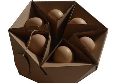 بسته بندی تخم مرغ ارگانیک